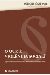 O, Que é a Violência Social?