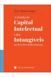 Gestão do Capital Intelectual e dos Intangíveis na Era do Conhecimento, A